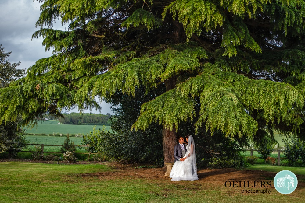 Bride sitting on lap of the Groom underneath a tree