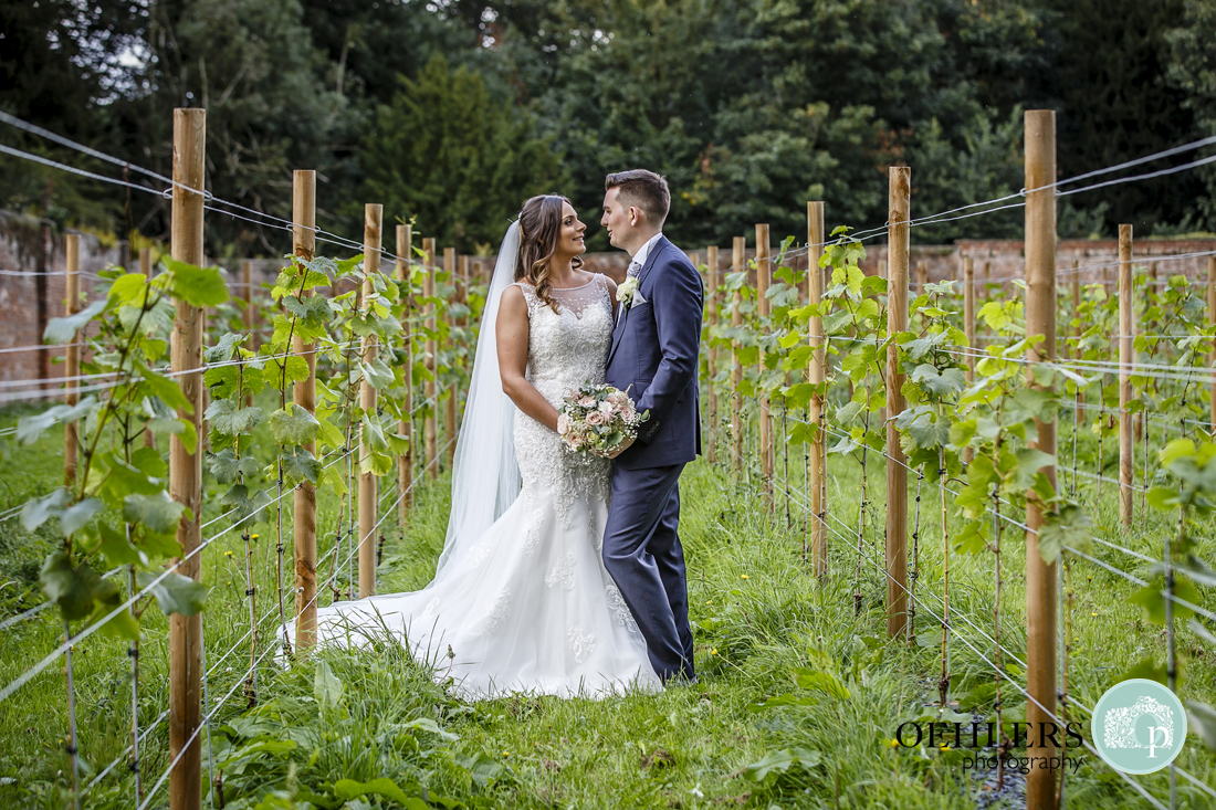 Private vineyard Carlton Towers wedding photography
