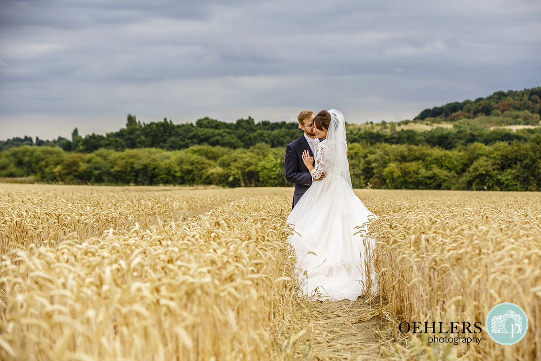 Swancar Farm Wedding Photography-Romantic image of Groom and Bride in a cornfield