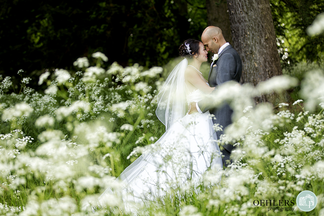 Romantic shoot through photograph of Bride putting her forehead onto the Groom's whilst the Groom leans against a tree.