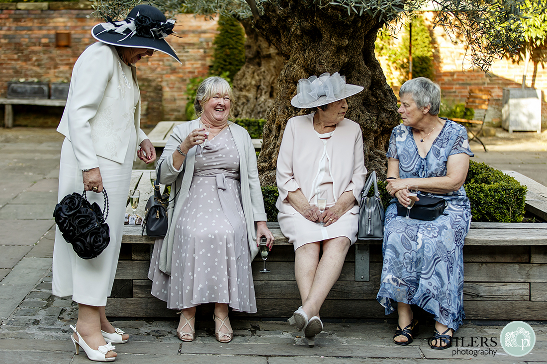 Four ladies by an olive tree in the courtyard of Shustoke Barn enjoying a drink and a chat.