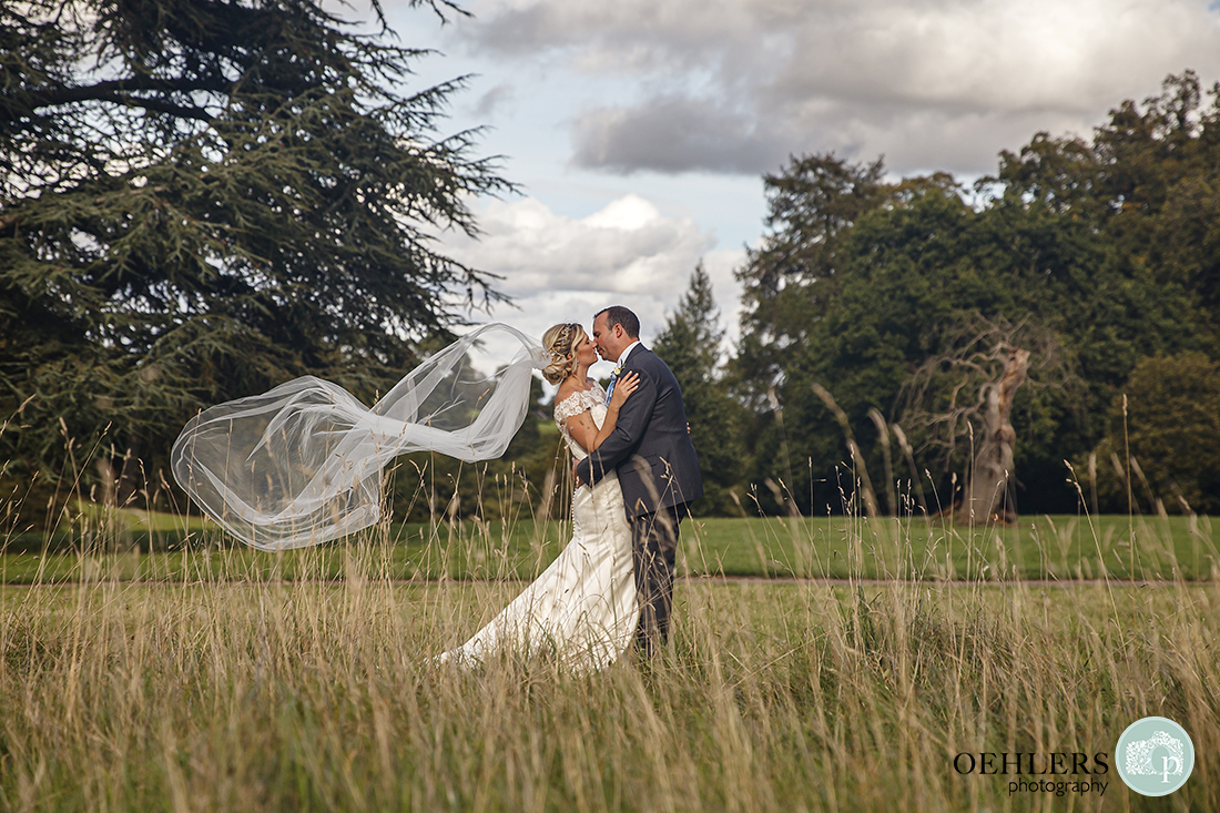 looking through grasses at the bride and groom kissing with the veil swirling in the wind